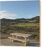 Park Bench In Malibu Wood Print