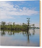 Pasquotank River North Carolina Wood Print