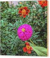 Pastel Wild Flowers Wood Print