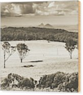 Pastoral Plains Wood Print