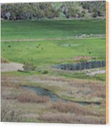 Peaceful Farm In Durango Wood Print