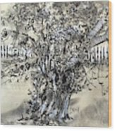 Pear Tree And Pickets Wood Print