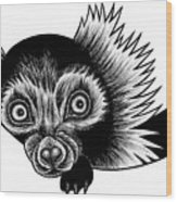 Peeking Lemur - Ink Illustration Wood Print
