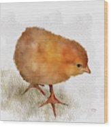 Peep Peep Wood Print