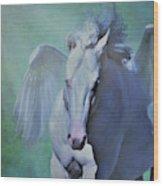 Pegasus Fantasy Wood Print
