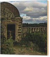 Pegoes Aqueduct Wood Print
