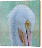 Pelican Beauty Wood Print