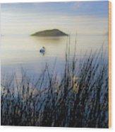 Pelican On Klamath Lake Wood Print
