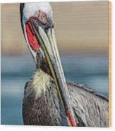 Pelican Pose Wood Print
