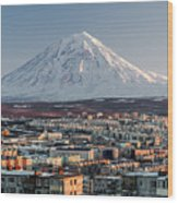 Petropavlovsk-kamchatsky Cityscape And Wood Print