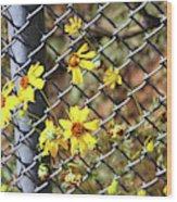 Phoenix Arizona Papago Park Blue Sky Red Rocks Scrub Vegetation Yellow Flowers 3182019 5327 Wood Print