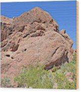 Phoenix Arizona Papago Park  Blue Sky Red Rocks Scrub Vegetation Yellow Flowers 3182019 5340 Wood Print