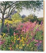 Phoenix Botanical Gardens Wood Print