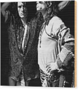Photo Of Aerosmith Wood Print