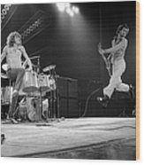 Photo Of Pete Townshend And Roger Wood Print