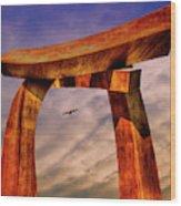 Pi In The Sky Wood Print