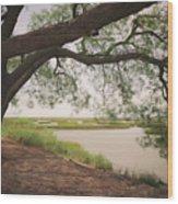 Pierce Marsh Wood Print