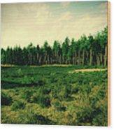 Pijnven Green Wood Print