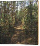 Pijnven Path Wood Print