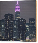 Pink Empire State Building Wood Print