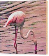 Pink Flamingo Two Wood Print
