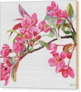 Pink Flowering Tree Blossoms Wood Print