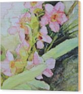 Pink Moth Orchids II Wood Print