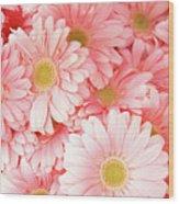 Pink Palette Wood Print