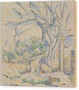 Pistachio Tree At Chateau Noir Wood Print