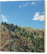 Plain Jane Wood Print