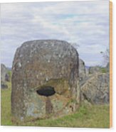 Plain Of Jars Wood Print