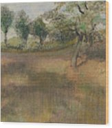 Ploughed Field Bordered By Trees Wood Print