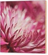 Poised Petals Wood Print
