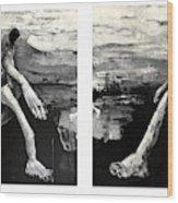 Polar Opposites  Wood Print