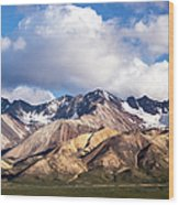 Polychrome Overlook View Wood Print