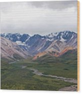 Polychrome Pass In Denali National Park Wood Print