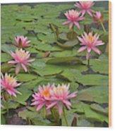 Pond Decor Wood Print