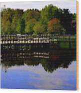 Pond Refletions Wood Print
