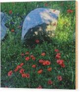Poppies And Rocks Wood Print