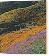 Poppies Bluebells And Rolling Hills Wood Print
