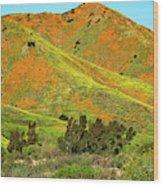 Poppy Hills And Gullies Wood Print
