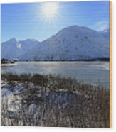 Portage Lake Alaska Wood Print