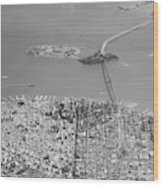 Portrait View Of Downtown San Francisco From Commertial Airplane Wood Print