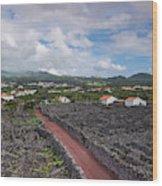 Portugal, Azores, Pico Island, Madalena Wood Print