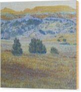 Prairie Realm Of West Dakota Wood Print