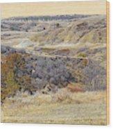 Prairie Slopes Reverie Wood Print
