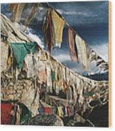 Prayer Flags Above Leh, Ladakh, Leh Wood Print