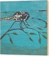 Praying Dragonfly Wood Print