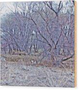 Prescott Arizona Watson Lake Bayou Trees Scrub Water Grasses 3142019 4916 Wood Print
