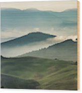 Pretty Morning In Toscany Wood Print